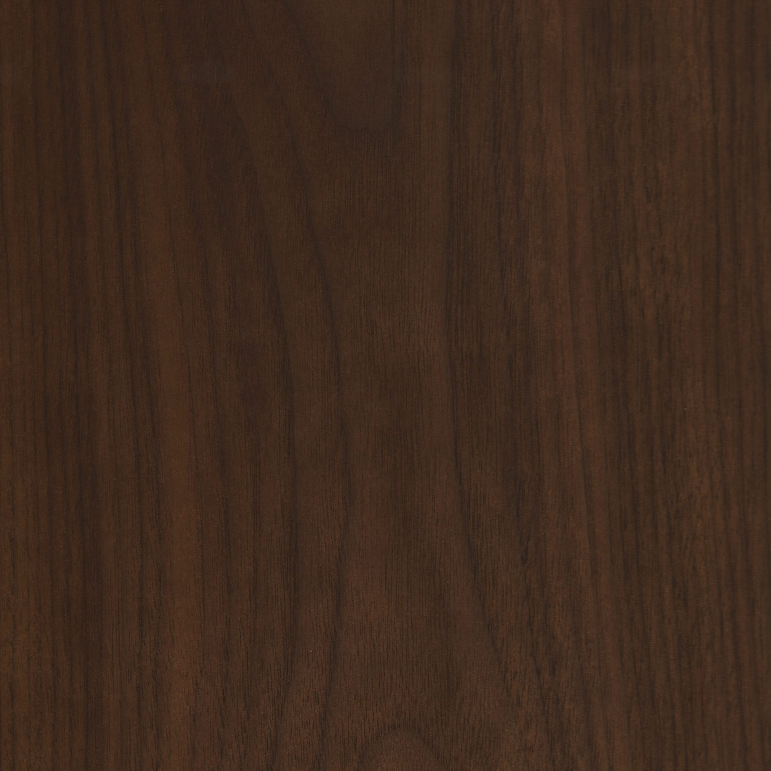American Black Walnut Natural Oiled Dark Amy